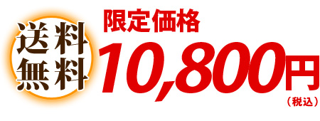 送料無料 10,000円